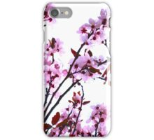Pink And White Cherry Blossom Flowers iPhone Case/Skin