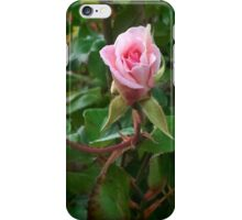 One Pink Rose iPhone Case/Skin
