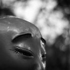 zen by hkavmode