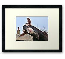 The Nosy Goat (2) Framed Print