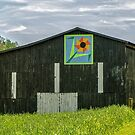 Kentucky Barn Quilt - Flower of Friendship by Mary Carol Story
