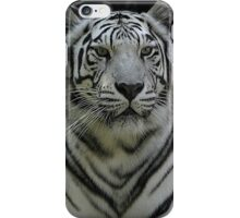 White tiger iPhone Case/Skin