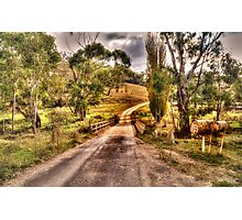 A Road Less Travelled -Oberon, NSW - The HDR Experience Photographic Print