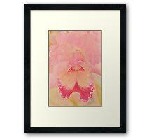 Orchid Softness Framed Print