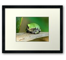 I Wear The Green Framed Print