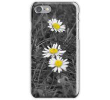 Daisies iPhone Case iPhone Case/Skin