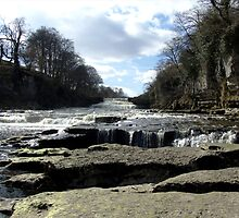 Aysgarth falls by mps2000