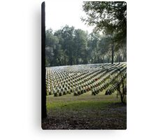 To Honor Canvas Print