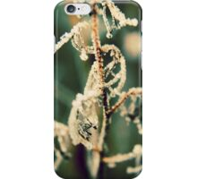A Touch of Frost iPhone Case/Skin