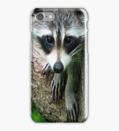 RACCOON PORTRAIT WITH PAWS & CLAWS  iPhone Case/Skin