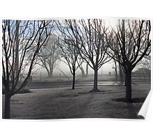 Foggy, Frosty, Pretty Morning Poster