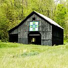 Kentucky Barn Quilt - Darting Minnows by Mary Carol Story