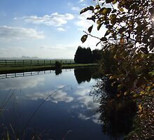 Willow Waters Fishery by mps2000