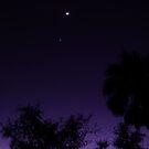 Moonlight by sunsetrainbow