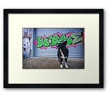Graffiti Dog Framed Print