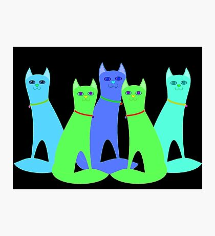 Cool Cats Photographic Print