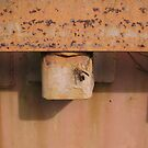 Wasp on Rusted Railcar by sunsetrainbow