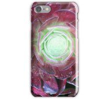 Purple Succulant iPhone Case/Skin