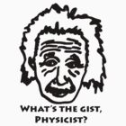What's The Gist, Physicist? Einstein Big Bang Theory by BrutallyHonest