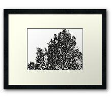 ©DA Monochrome I Framed Print