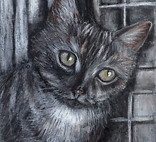 Window cat by sandwoman