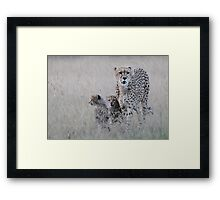 Leopard mother and cub Framed Print