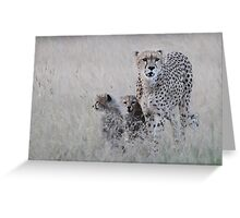 Leopard mother and cub Greeting Card