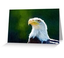 Beautiful Bald Eagle 2 Greeting Card