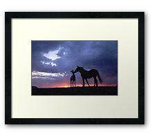 Horses in Love 2 Framed Print