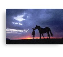 Horses in Love 2 Canvas Print