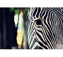 Living Barcode Photographic Print