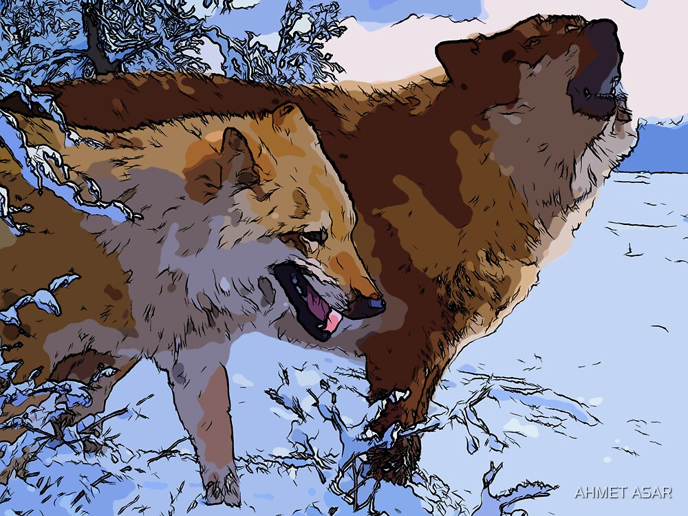 Amazing Wolves by Adam Asar