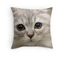 Soft Kitty, warm kitty Throw Pillow