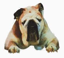 Bull Dog by artstoreroom