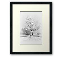 White Bend Framed Print
