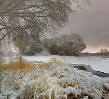 Winter Scene 1 by Bob Larson