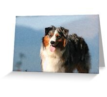 Australian Shepherd 2 Greeting Card