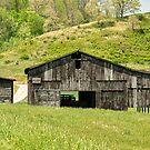 Barn - Tire Center by Mary Carol Story