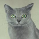 Startled Cat by Pam Humbargar