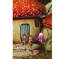 The Mushroom House Photographic Print