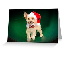 HUGGIE AT CHRISTMAS TIME Greeting Card