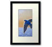 Swallow Ascending Framed Print