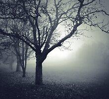 Somber by Leon - D'Zine