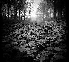 Fallen by Leon - D'Zine