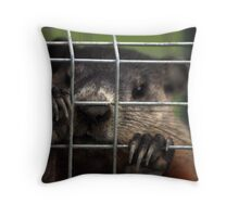 Relocated Groundhog. Throw Pillow