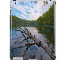 Water Logged iPad Case iPad Case/Skin
