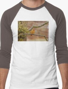 Lady Cardinal Men's Baseball ¾ T-Shirt