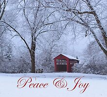 Peace & Joy by Gene Walls
