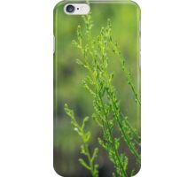 Breeze in the afternoon iPhone Case/Skin