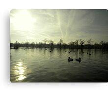 Bayou Duck Decoys Canvas Print